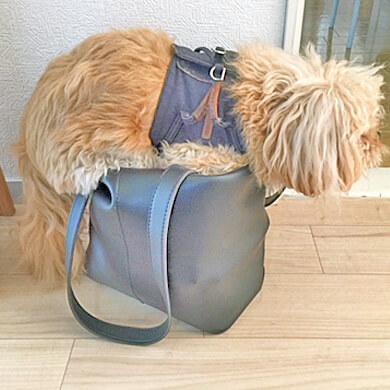 ペキプー 鞄