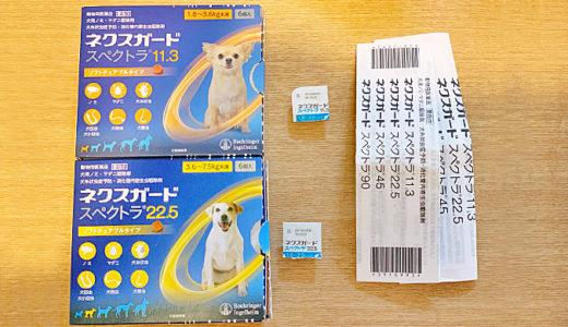 わが家では、愛犬のノミ・マダニ駆除とフィラリア予防は、ネクスガードスペクトラで対策しています