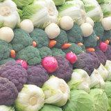 強アルカリイオン水 野菜 洗い