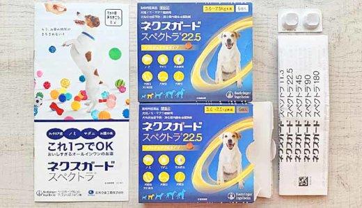 犬用のノミ・マダニ駆除薬とフィラリア予防薬の効果と価格比較を紹介します